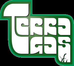 terragas-kaasuasennukset